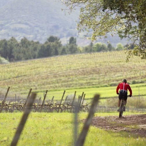 foto3_com com ciclista